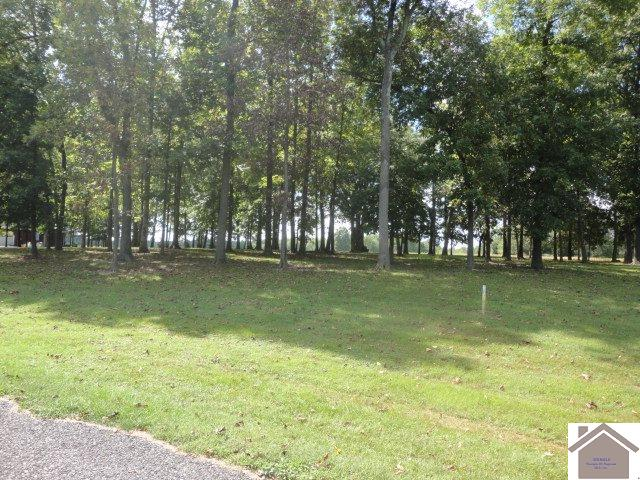 Lot 57 Meadows  Mayfield, KY 42066