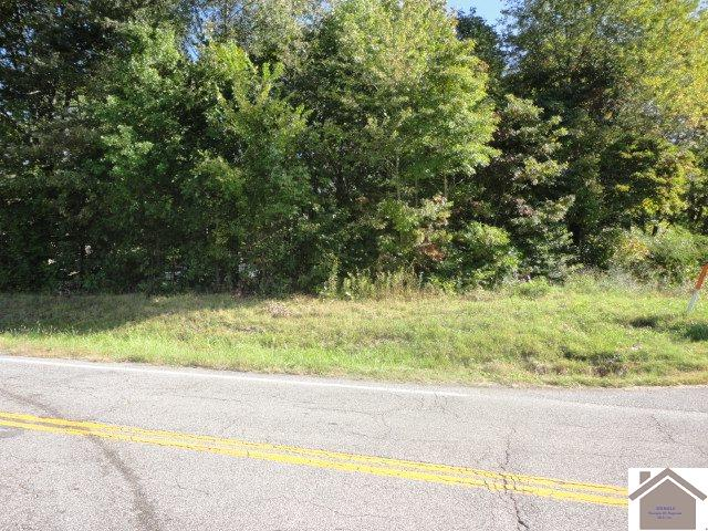 Intersection of 1241 & 849 Mayfield, Ky 42066